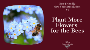 Eco-Friendly Flowers for Bees