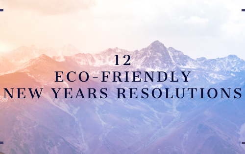 Eco-Friendly New Years Resolutions