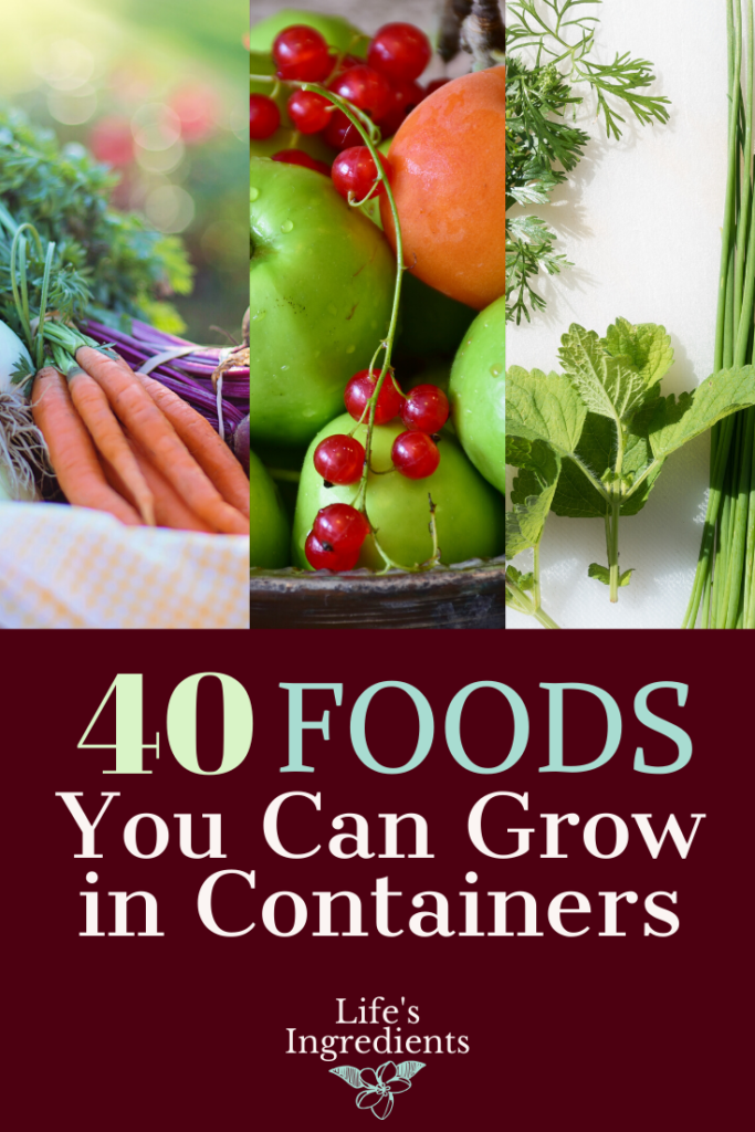 40 foods you can grow in containers